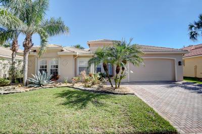 Delray Beach Single Family Home For Sale: 6653 Dana Point Cove