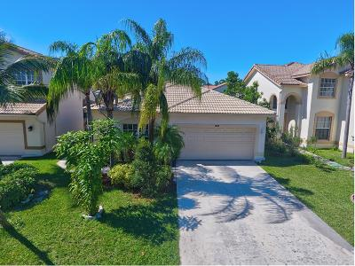Boynton Beach Single Family Home For Sale: 7635 Colony Palm Drive