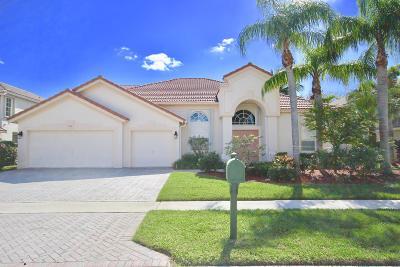 Boynton Beach Single Family Home For Sale: 7218 Brunswick Circle