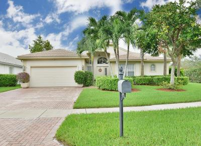 Lake Worth Single Family Home For Sale: 7856 Amethyst Lake Point