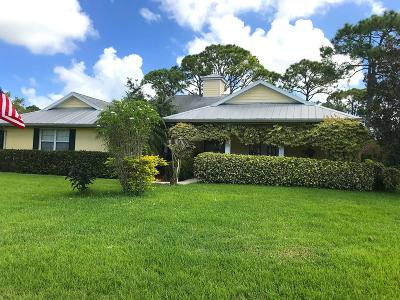 Port Saint Lucie Single Family Home For Sale: 692 SW Ewing Avenue