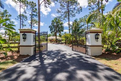 Palm Beach Gardens Single Family Home For Sale: 13900 Wind Flower Drive