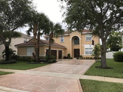 Lake Worth Single Family Home For Sale: 6303 Shadow Tree Lane