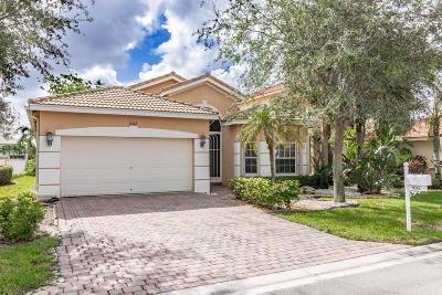 Lake Worth Single Family Home For Sale: 8162 Via Bolzano