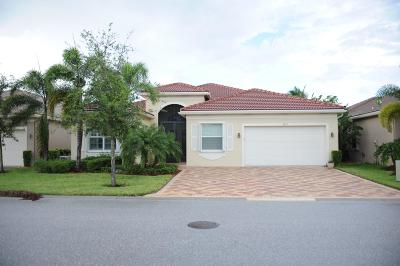 Boynton Beach Single Family Home For Sale: 9839 Halston Manor