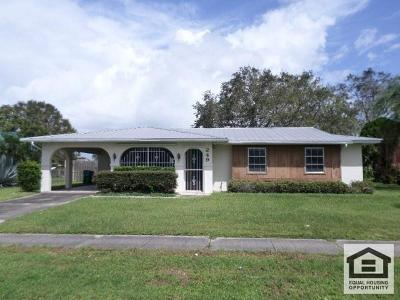Port Saint Lucie Single Family Home For Sale: 249 NE Floresta Drive