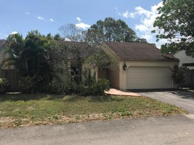 Wellington Single Family Home For Sale: 569 Goldenwood Way