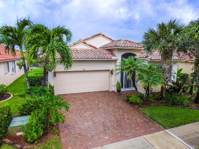 Port Saint Lucie Single Family Home For Sale: 330 NW Springview Loop