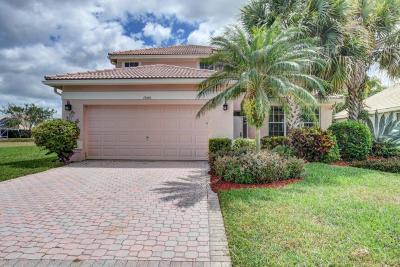 Delray Beach Single Family Home For Sale: 13556 Kiltie Court
