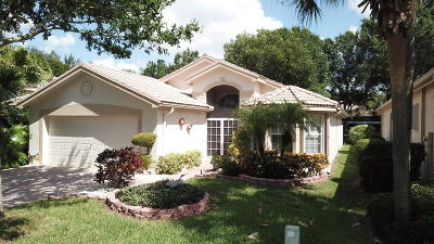 Boynton Beach Single Family Home For Sale: 7901 Sonora Street