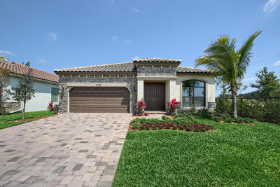 Lake Worth Single Family Home For Sale: 8785 Willow Cove Lane