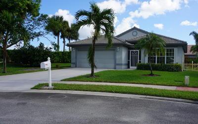 Lake Worth Single Family Home For Sale: 7475 Michigan Isle Road