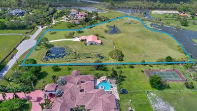Delray Beach Single Family Home For Sale: 10875 El Paraiso Place