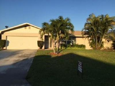 Palm Beach Gardens Single Family Home For Sale: 10188 Dogwood Avenue