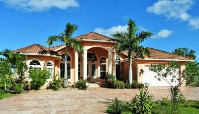 Port Saint Lucie Single Family Home For Sale: 3873 SW Hall Street