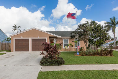 Lake Worth Single Family Home For Sale: 5149 Canal Circle S