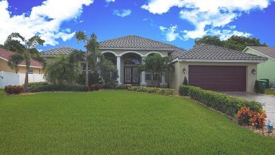 Port Saint Lucie Single Family Home For Sale: 2670 SW Cadet Circle