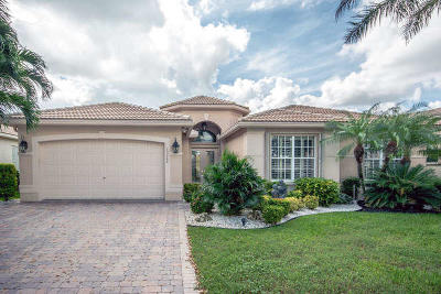 Delray Beach Single Family Home For Sale: 13268 Alhambra Lake Circle
