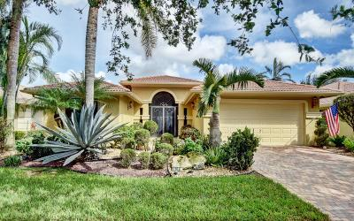 Boynton Beach Single Family Home For Sale: 11060 Via Amalfi