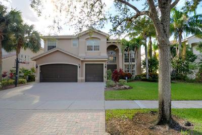 Boca Raton Single Family Home For Sale: 19312 Skyridge Circle