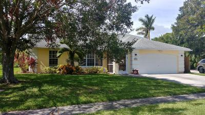 Port Saint Lucie Single Family Home For Sale: 344 NE Camelot Drive