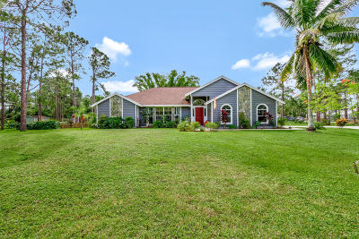 Jupiter Single Family Home For Sale: 13408 169th Court