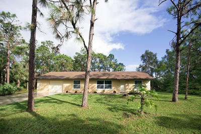 Jupiter Single Family Home For Sale: 13927 157th Court