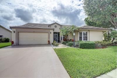 Lake Worth Single Family Home For Sale: 3997 Summer Chase Court