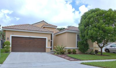 Boynton Beach Single Family Home For Sale: 9397 Verona Lakes Boulevard