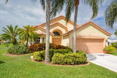 Delray Beach Single Family Home For Sale: 14181 Castlerock Way