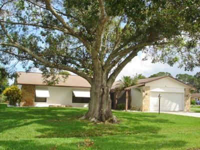 Port Saint Lucie Single Family Home For Sale: 885 SE Forgal Street