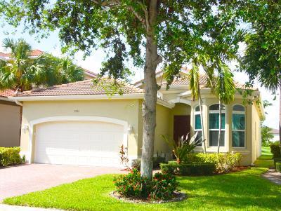 Boynton Beach Single Family Home For Sale: 7201 Shady Grove Lane