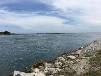 Fort Pierce Residential Lots & Land For Sale: 401 S Indian River Drive