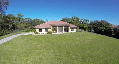 Loxahatchee Single Family Home For Sale: 16277 E Harlena Drive