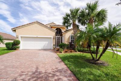 Port Saint Lucie Single Family Home For Sale: 360 NW Springview Loop