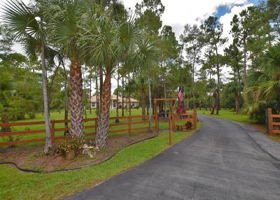 Loxahatchee Single Family Home For Sale: 2979 Palm Deer Drive