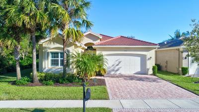 Boynton Beach Single Family Home For Sale: 10000 Yellowfield Drive
