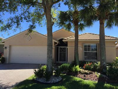 Boynton Beach Single Family Home For Sale: 8110 Duomo Circle