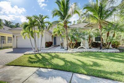 Palma Vista Single Family Home For Sale: 9695 Palma Vista Way