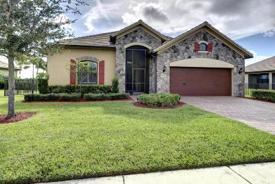 Wellington Single Family Home For Sale: 10832 Pisa Road