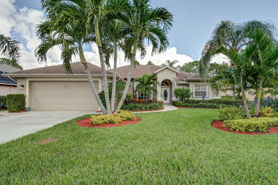 Port Saint Lucie Single Family Home Contingent: 214 SW Fernleaf Trail