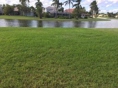 Boca Falls Rental For Rent: 12415 Rockledge Circle
