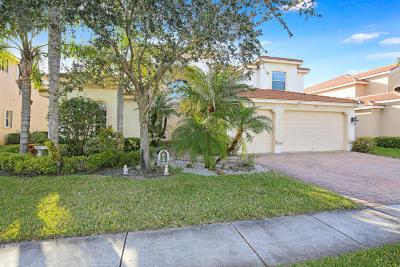 Lake Worth Single Family Home For Sale: 7208 Via Abruzzi