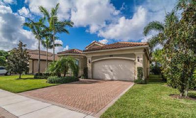 Delray Beach Single Family Home For Sale: 16789 Bridge Crossing Circle