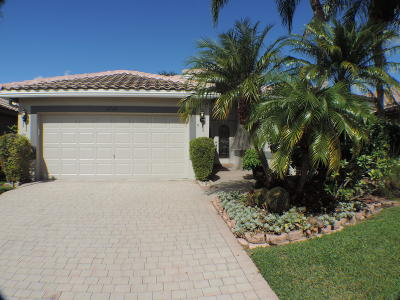 Boynton Beach Single Family Home For Sale: 6565 Sherbrook Drive