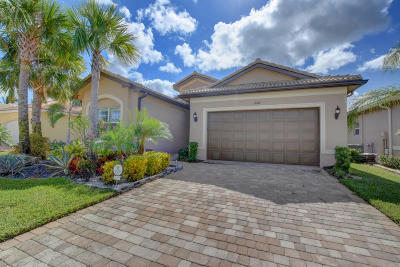Boynton Beach Single Family Home For Sale: 8168 Pikes Peak Avenue