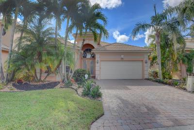 Boynton Beach Single Family Home For Sale: 7152 Veneto Drive