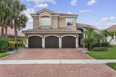 Boca Raton Single Family Home For Sale: 19665 Black Olive Lane