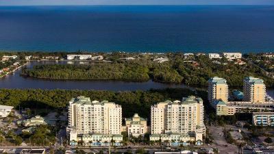 Boynton Beach Rental For Rent: 450 Federal Highway #813