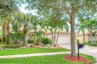 Boynton Beach Single Family Home For Sale: 6934 Great Falls Circle
